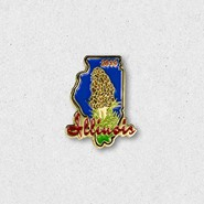 2019-Morel-Pin