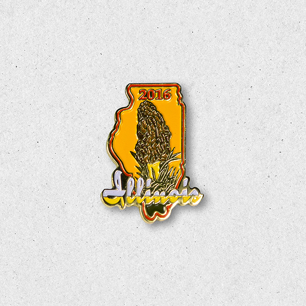2016 Morel Pin