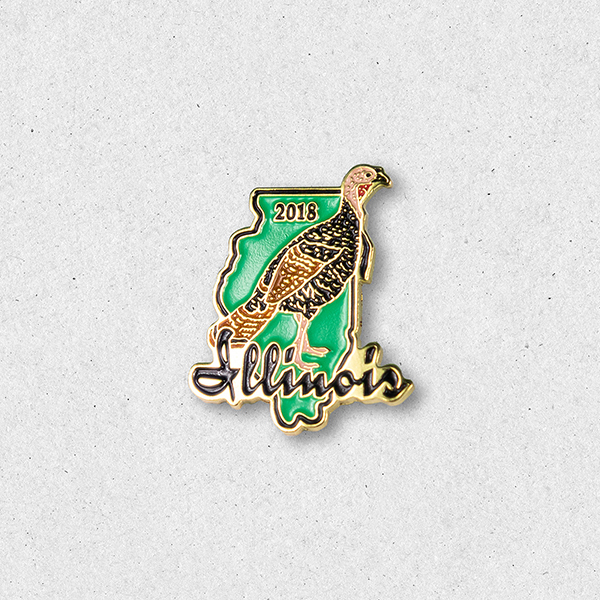 2018 Turkey Pin